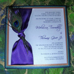 : peacock wedding invitations with feather